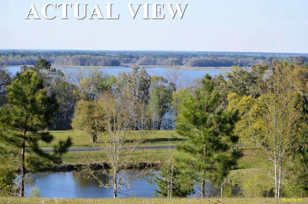 BEAUTIFUL Prime 1 11 acre lot on the 38,000 acre Lake Seminole